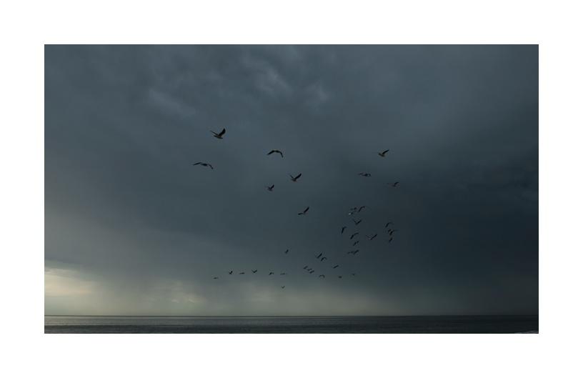 Seaford Storm78
